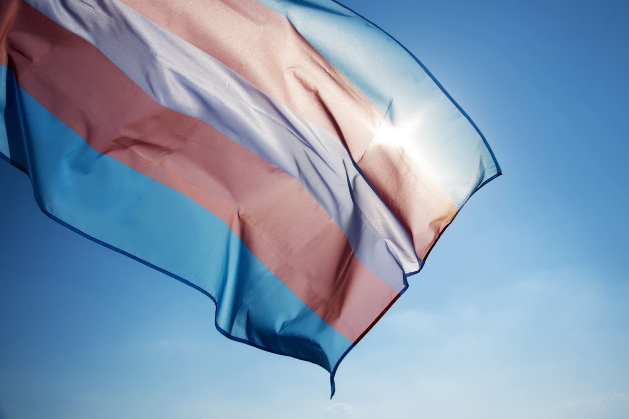 Transgender Flag Pink White and Light Blue Waving in the Sky
